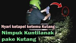 Video Lempar Kunt!Lanak Pakai Kutang MP3, 3GP, MP4, WEBM, AVI, FLV Januari 2019
