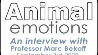 Animal Emotions - An Interview With Professor Marc Bekoff