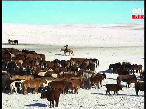 """""""Монгол Улсын шилдэг аймаг""""-аар дөрвөн жил дараалан шалгарсан Сүхбаатар аймаг"""