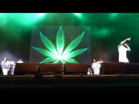 Snoop Dogg - Lets Get High & We Can Freak It Live Vienna, Austria 2015 HD (Dan) 22.07