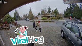 Package Thief Caught in the Act || ViralHog