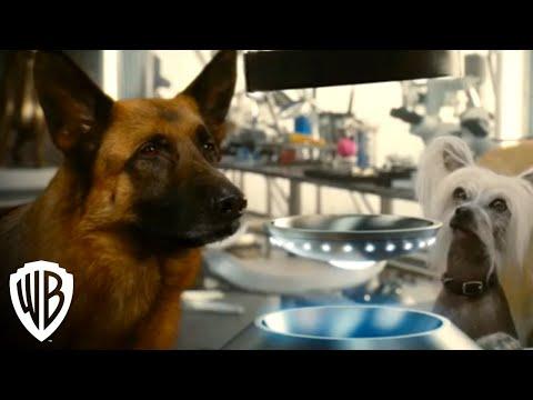 Cats & Dogs: The Revenge of Kitty Galore | Digital Trailer | Warner Bros. Entertainment
