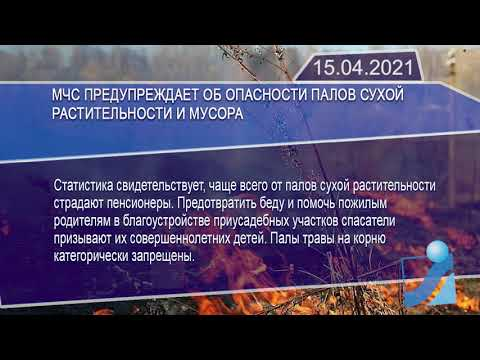 Новостная лента Телеканала Интекс 15.04.21.
