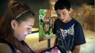 Zoo-AR YouTube video
