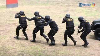 Video Baku Tembak Penyergapan Teroris di Kentungan MP3, 3GP, MP4, WEBM, AVI, FLV April 2019