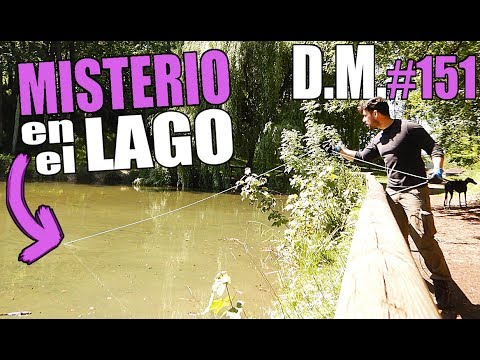 MISTERIO Y DRAMA, pescando con SUPER IMÁN de neodimio, Magnet Fishing - Detección Metálica 151