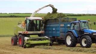 Brendan Marshall cutting silage with his Class Jag, drawing was a fleet of fendts, deeres and New HollandsFilmed near Nohoval Cove.Thanks to all involved Facebook page: https://www.facebook.com/agrivideoscork