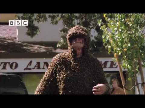 "Don't try this at home! Man wears suit made entirely of bees! From ""Swarm"""