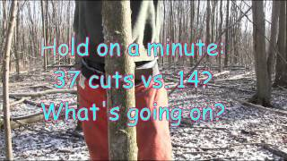 Video Why an angled back cut is dangerous and unecessary when hinge cutting a tree MP3, 3GP, MP4, WEBM, AVI, FLV April 2019