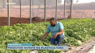 [Mais Agro] Produtores investem na plasticultura na região