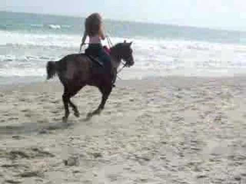 Niki riding Cocoa at Myrtle Beach South Carolina.
