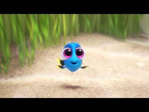 Finding Dory (Clip 'Baby Dory')