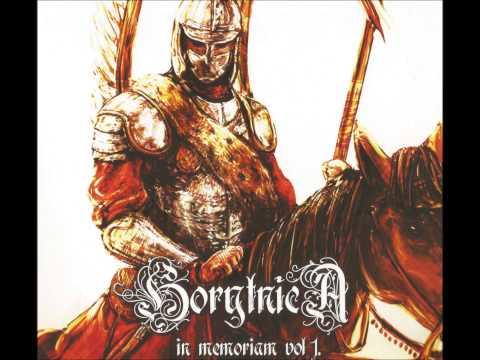 Tekst piosenki Horytnica - Stary wiarus po polsku