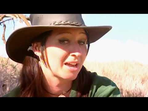 Animal Park: Season 7 Episode 8 (Wildlife Documentary) | Full Documentary