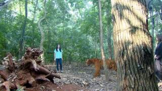 Nonton Ganteng Ganteng Serigala Episode 463 Film Subtitle Indonesia Streaming Movie Download