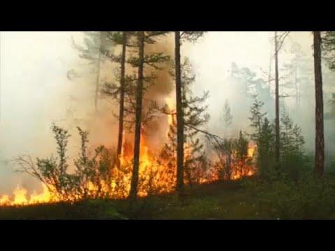 Μεγάλες πυρκαγιές στη Σιβηρία