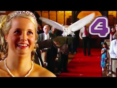 Owl Delivers Wedding Rings to SURPRISED Bride!! | Don't Tell the Bride