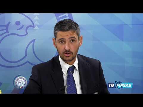 TG FIPSAS 2017 - 13