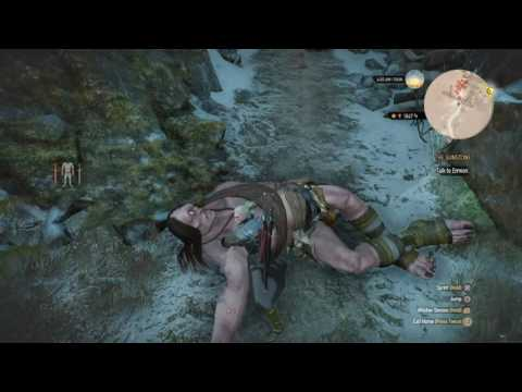The Witcher 3: Wild Hunt level up fast high level