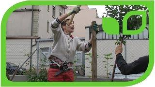 Sabine schlägt einen Pflock ein
