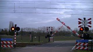 Locatie: De KraanTraject: Tilburg - 's-HertogenboschSoort: AHOBRode lichten: 8Oranje pijl: 1Bellen: 4Bomen: 2Andreaskruisen: 2Passeren:- DDZ als IC Zwolle → RoosendaalVideo is gemaakt op 05-02-17