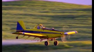 Air Tractor 402 spraying canola field. No music, only airplane sounds. Turbo prop ag aircraft spraying in South Africa. They are flying fast an low over agricultural fields to apply pesticides. Listen to the sound of the Pratt & Whitney turbine engine which is a popular engine in crop duster aircraft. Low flying and with a engine which is basically a jet engine connected to a propeller through a gearbox they fly along at 140mph. These are not aerobatics, although it might looks like it. It is everyday operation for a ag pilot.