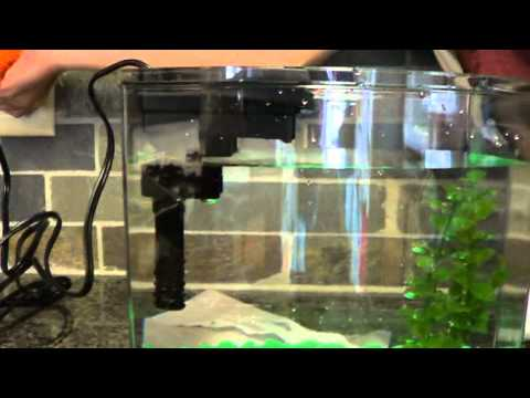 How to Set Up A Fish Tank - Setting Up An Aquarium