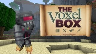 Server Hoppin! - The Voxel Box - Amazing Builds