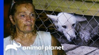 This Was The Most Pressure I've Ever Had To Deal With | Pit Bulls & Parolees by Animal Planet