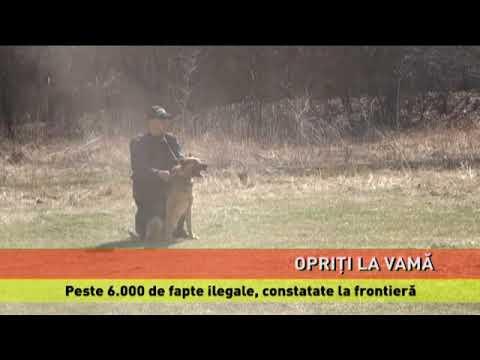 Peste 6.000 de fapte ilegale, constatate la frontieră