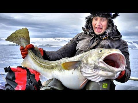 рыбалка во  баренцевом град  рыбачий