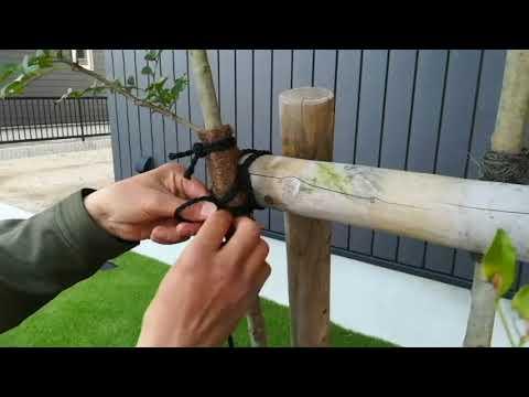 出雲市 外構 エクステリア 庭 植栽 樹木の固定