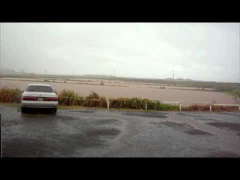 Hawaii-raining cats and dogs in the shrimp farm [english sub]