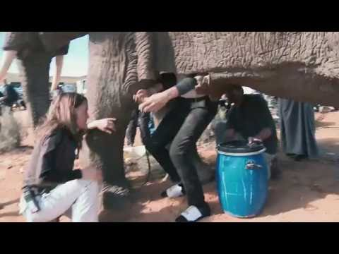 Video Grimsby - Behind the scenes on the elephant's vagina scene download in MP3, 3GP, MP4, WEBM, AVI, FLV January 2017