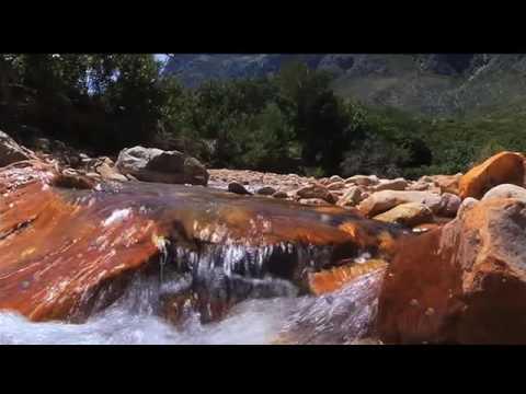 Solving SA's sanitation conundrum