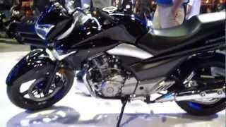 1. 2013 Suzuki GW250 Motorcycle