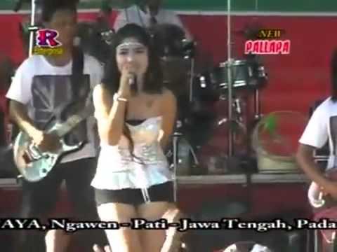 Video Layang sworo @reza lawang sewu download in MP3, 3GP, MP4, WEBM, AVI, FLV January 2017