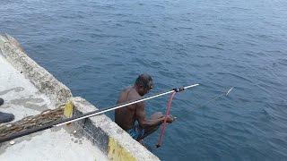 Video Panah Ikan Besar di Pelabuhan Waren Waropen Papua MP3, 3GP, MP4, WEBM, AVI, FLV Desember 2017