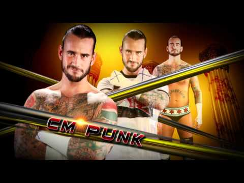 Night of Champions: CM Punk vs. Triple H - Tonight