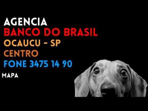 ✔ Agência BANCO DO BRASIL em OCAUCU/SP CENTRO - Contato e endereço