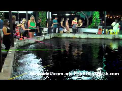 Prawn Fishing in Singapore – Big Splash