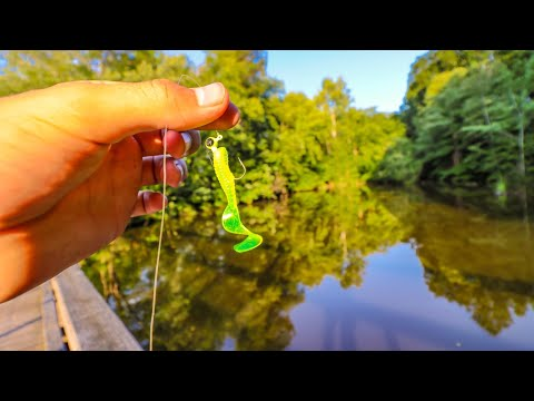 Video Micro Lure Fishing In A Pond (Tiny Lure) download in MP3, 3GP, MP4, WEBM, AVI, FLV January 2017