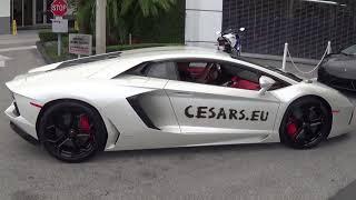 Cesars Secrets Lamborghini Aventador
