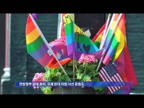 성소수자 단체, '총기규제' 돌입 6.17.16 KBS America News