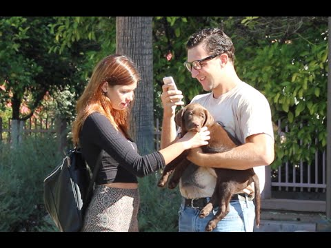 Nerd Gets Dates With Hot Girls Because Of A Little Puppy :3