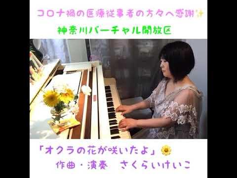神奈川「バーチャル開放区」櫻井桂子作曲・演奏「オクラの花が咲いたよ」の画像