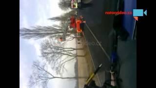 Mýval zastavil dopravu u Karlových Varů. Přinášíme zásah hasičů