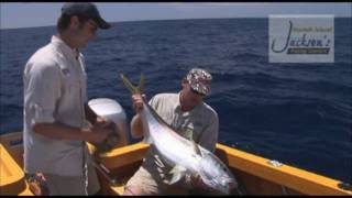 Jacksons Fishing Charters operates out of Norfolk Island and specialises in sport fishing for species like king fish, wahoo, yellow fin tuna and marlin.