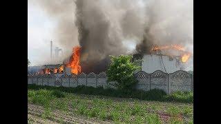 Pożar tartaku w Smulsku - pomagali nasi strażacy