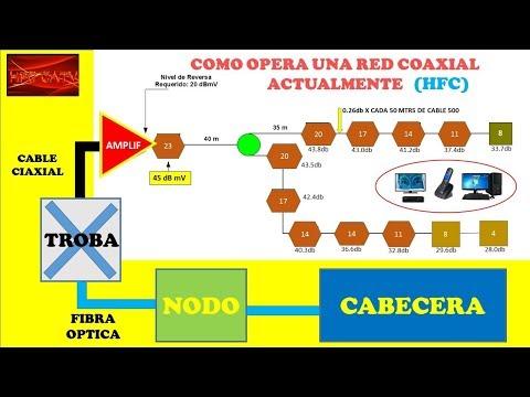 COMO FUNCIONA Y/O OPERA UNA RED HFC EN LA ACTUALIDAD